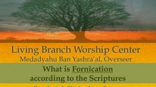 What-Is-Fornication-According-To-Scripture-attachment