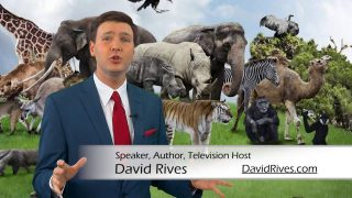 Adaptation-Why-You-Should-Believe-in-Creation-…And-Not-Evolution-David-Rives-attachment