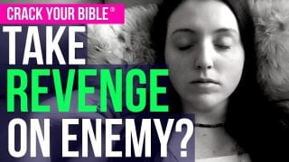 TAKE-REVENGE-Stop-being-a-punching-bag-let-God-do-His-job-attachment